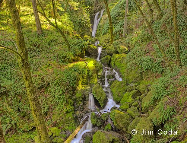 Waterfalls in Cataract Canyon, Marin County, California