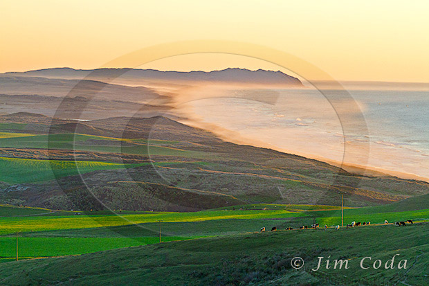 Photo of Ten Mile Beach looking south toward Point Reyes. The Kehoe Ranch is in the foreground.
